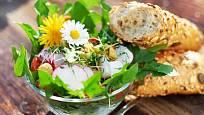 Do salátu se hodí mladé jarní listy, květy i naklíčená semínka