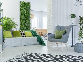Vertikální zahrada je trendy. Stačí vám k ní jen prázdná stěna a oblíbené rostliny