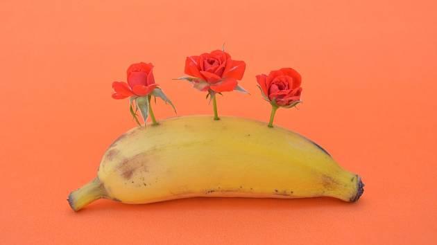 banán růže ilustrační foto
