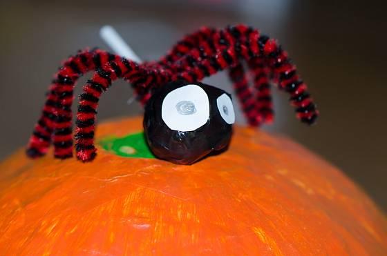 Pavouci zhotovení z lízátek a chlupatých modelovacích drátků.