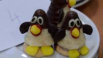 Tučňáci - vosí hnízda trochu jinak