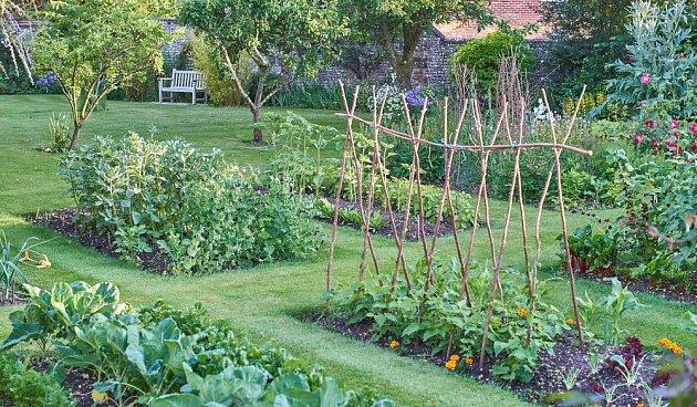 Zeleninová zahrada může být užitečná i krásná