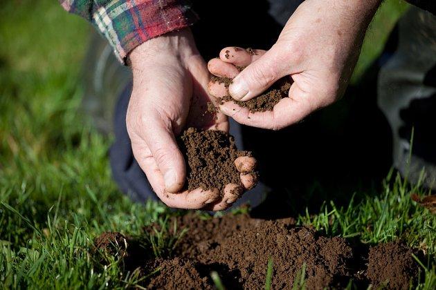 Jílovitou od písčité půdy poznáte i po hmatu