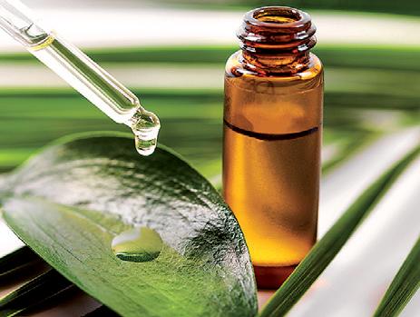 Pokud si doma sáhnete na žehličku, kůži rychle zchlaďte a potřete tea tree nebo třezalkovým olejem