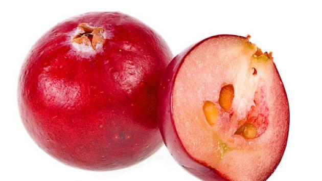 Klikva plod