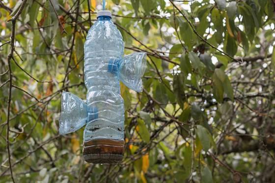 Past na vosy z plastové lahve