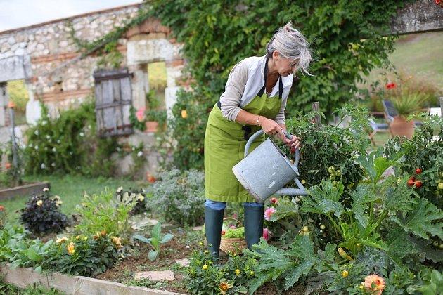 Vyrobenou směsí můžete i zalévat přímo do půdy, což vyživí přímo kořeny rostlin.
