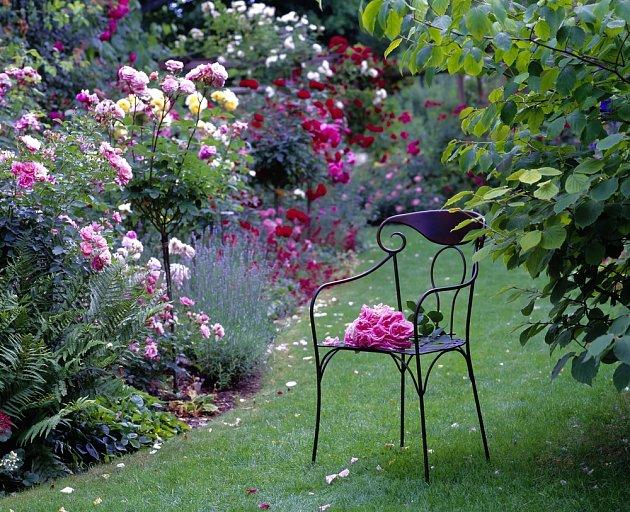 Růže jsou na zahradě nenahraditelné