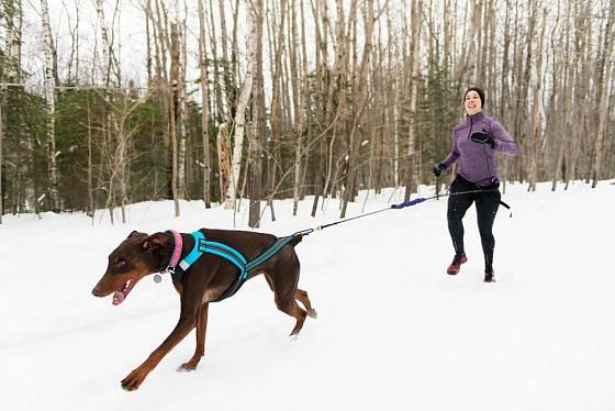 Při sportování se psy se hodí speciálně upravená vodítka.
