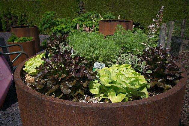 K pěstování bylinek a zeleniny posloužily i vyřazené ocelové skruže