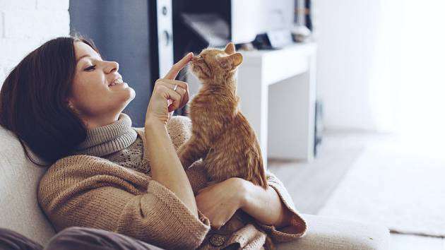Chcete své kočce dopřát ideální stravu? Hlídejte pitný režim a kupujete-li krmivo, nezůstávejte výhradně u kapsiček.