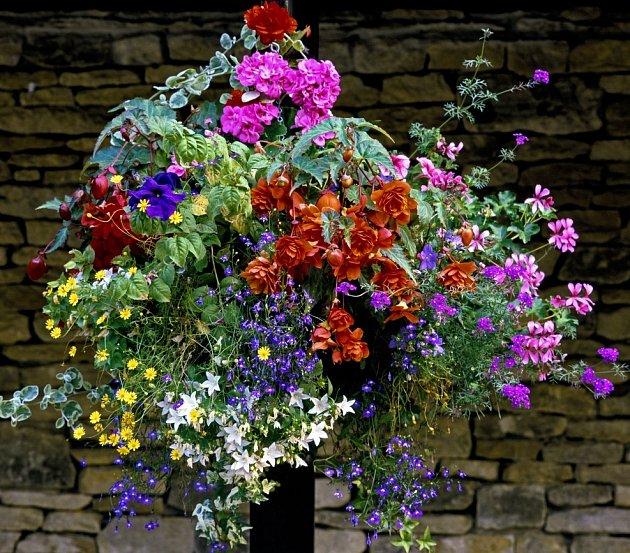 Závěsné košíky se směsí letniček kvetou celé léto