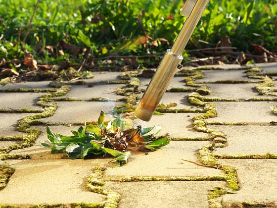 Vypalovač zahubí rostliny ve spárách dlažby