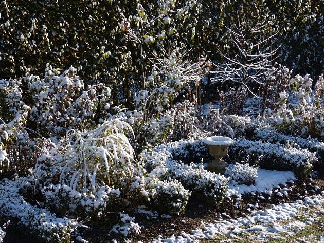 A takto může vypadat v zimě . Místo barev v zimě vyniknou tvary živých plůtků a habitus jednotlivých rostlin