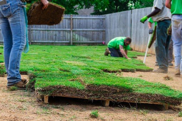 Pokládka kobercového trávníku