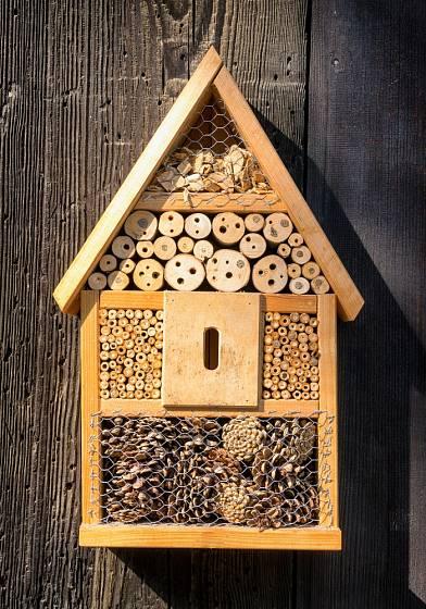 Hnízdiště pro hmyz mohu mít podobu malé chaloupky.