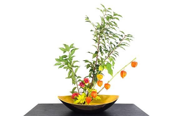 Mochyně židovská v kombinaci se žlutou chryzantémou a větvičkou.