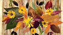 Květinové aranžmá z vylisovaných rostlin.