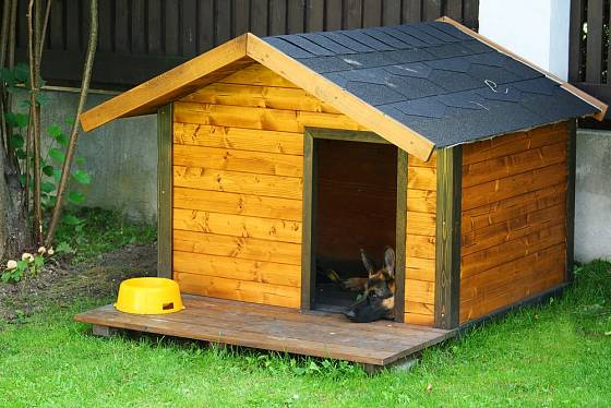 Klasicky řešená psí bouda.