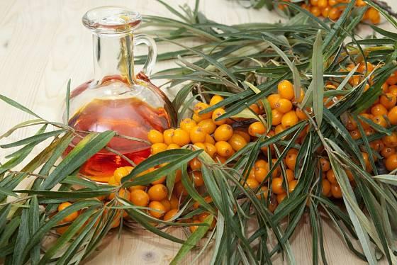 Rakytník lze vyluhovat v olivovém oleji.