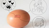 Víte, co znamenají čísla vyražená na vejcích?