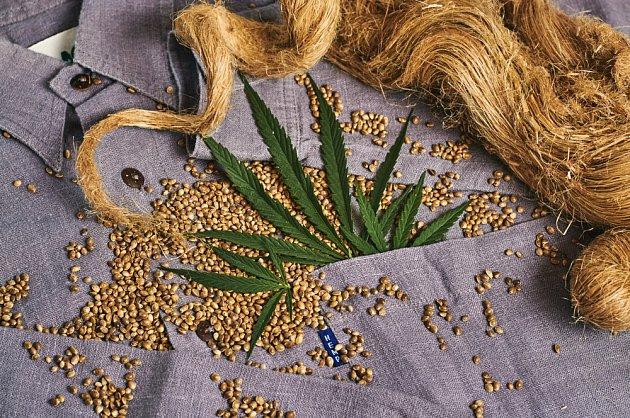 Technické konopí poskytuje cenná semena a materiál na tkaní odolných látek
