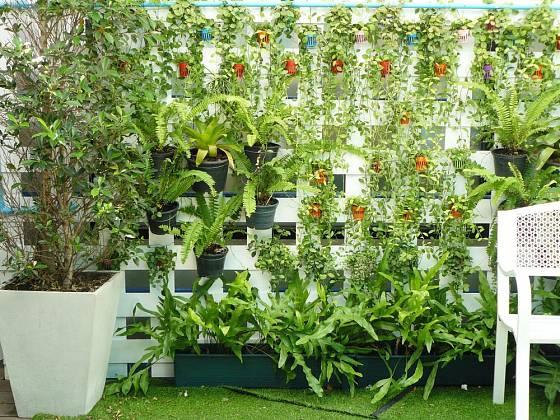 Zelenou stěnu lze vytvořit i jednodušeji, s pomocí klasických květináčů