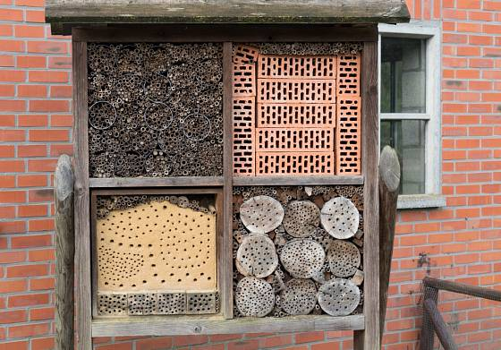 Při výrobě hotelů pro hmyz se hodí různé materiály.