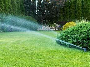 Zavlažování pomáhá především v sušším období.