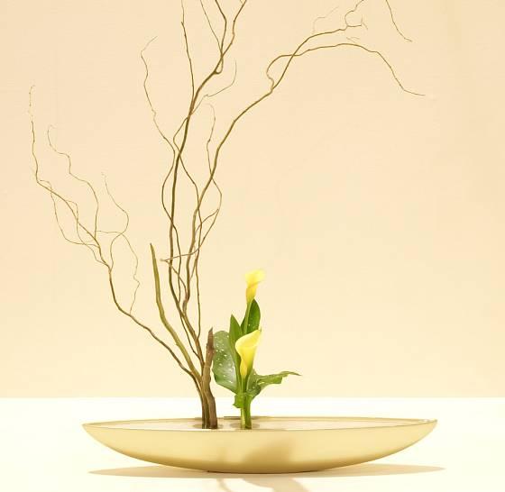 Vyznavači ikebany v tomto umění spatřují duchovní cestu jejímž prostřednictvím se snaží dobrat pravdy o sobě samých.