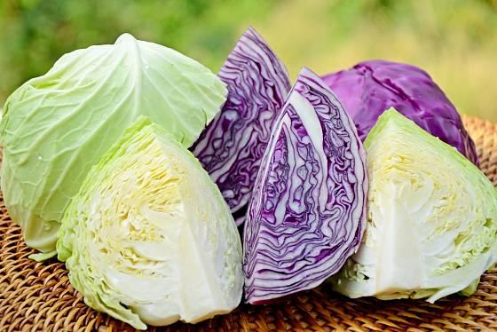 Zelí patří k vynikajícím zdrojům vitamínů.