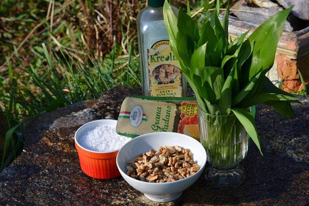 Na přípravu pesta potřebujete česnek medvědí, olej, sůl, ořechy a sýr.