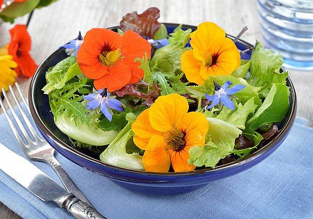 Květy lichořeřišnice ozdobí salát (zde spolu s květy brutnáku)
