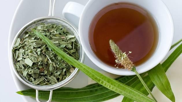 Jedničkou mezi čaji na hubnutí je jednoznačně ten zelený.