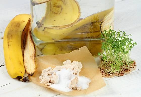 Slupky od banánů poslouží jako skvělé hnojivo pro rostliny.