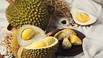 Durian má poměrně velké plody