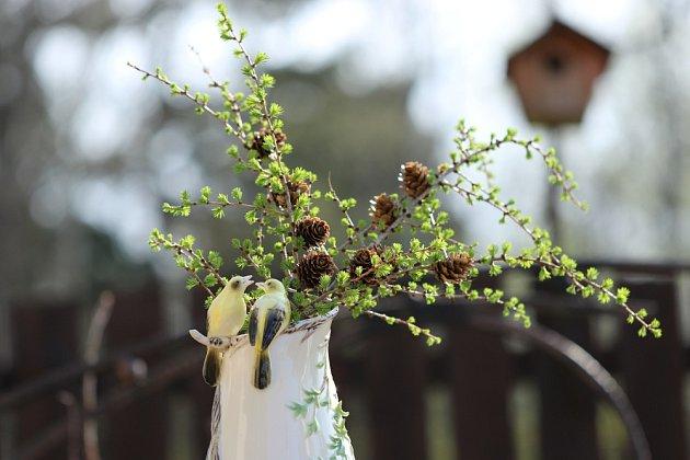 Svěží zeleň nabídnou i větvičky modřínu.