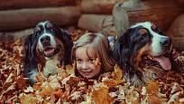 Autistické děti mají v berňácích a dalších psech velkých plemen skvělou oporu.