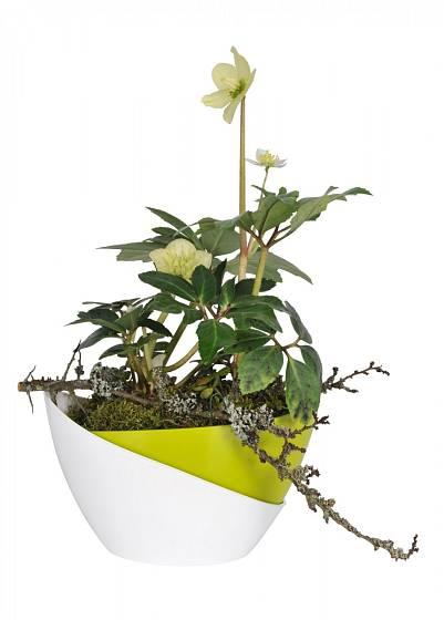 Samozavlažovací květináč Doppio připomíná svým tvarem loďku.