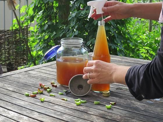 Domácí hnojivo připravené z čajových lístků.
