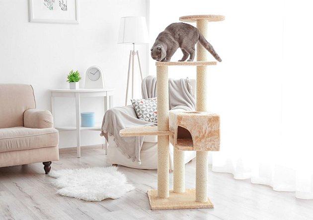 I klasický kočičí strom může do interiéru pěkně zapadnout