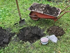 Příprava jam pro výsadbu stromku.