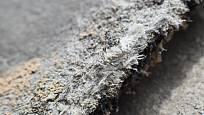 Smrtící azbest je součástí směsi