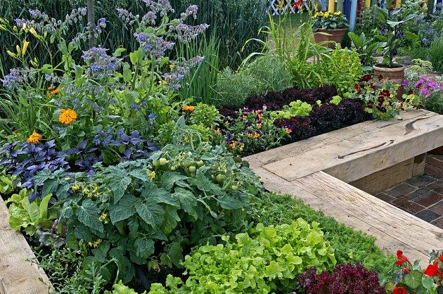 Záhon složený ze zeleniny a jedlých letniček může být velmi dekorativní