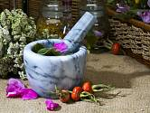 Z bylinek můžeme vyrobit likér, šťávu či víno.