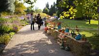 Podzimní botanickou zahradu zpestřila výstava dýní.