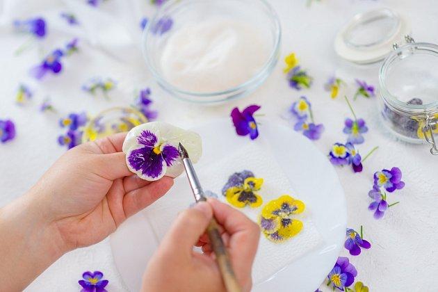 Příprava kandovaných květů vyžaduje velkou trpělivost.
