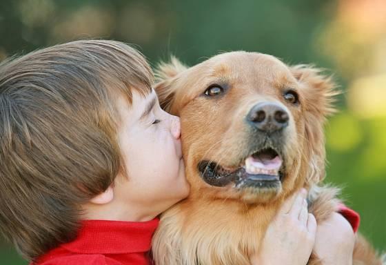 Rozhodneme-li se pro dospělého psa, měl by být zvyklý na kontakt s dětmi.