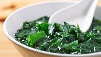 Vařené mořské řasy se hodí do polévky i salátu