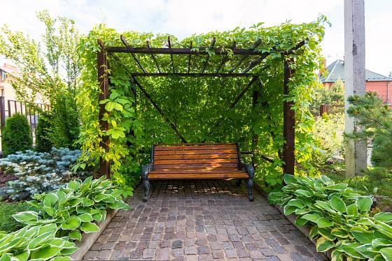 Konstrukce dokonale porostlá popínavými rostlinami.